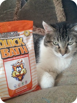 Quick Bath for Cats and Dogs #Review