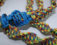 Helix Paracord Leash