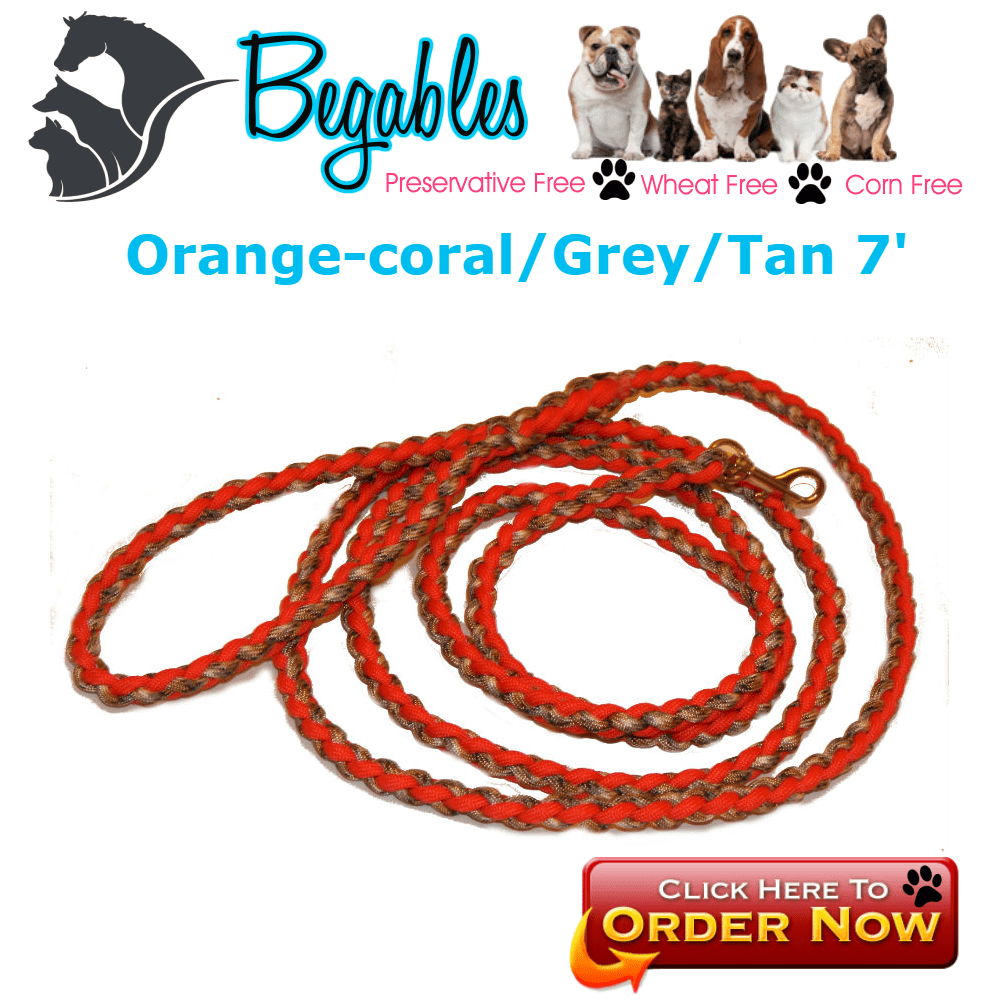 4 strand leash