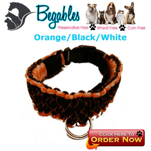 Orange Black White LED Collar
