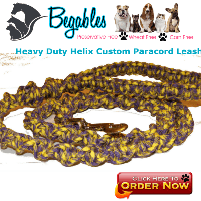 Helix Paracord Dog Leash