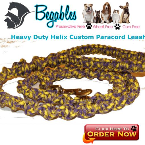 Helix Paracord Dog Leash