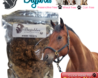 Begables horse treats