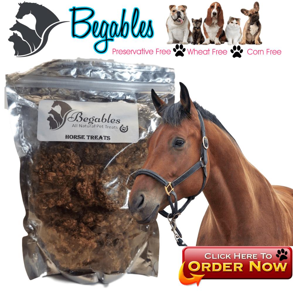 Begables horse treats