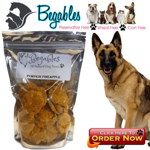 Pumpkin Pineapple dog Treats