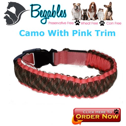 Camo with pink trim LED collar