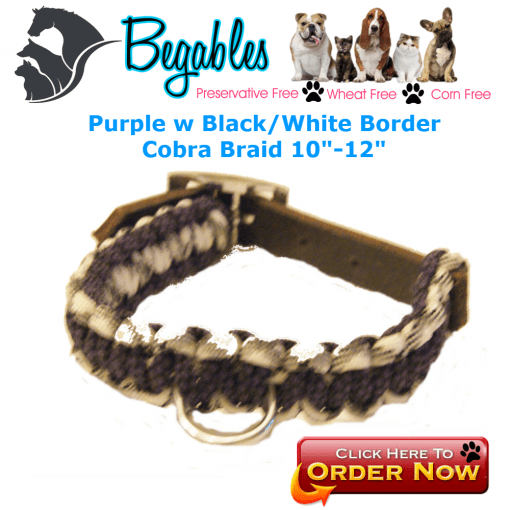 Paracord Leather collar