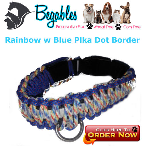 Rainbow w Blue polka dot Border| LED collar