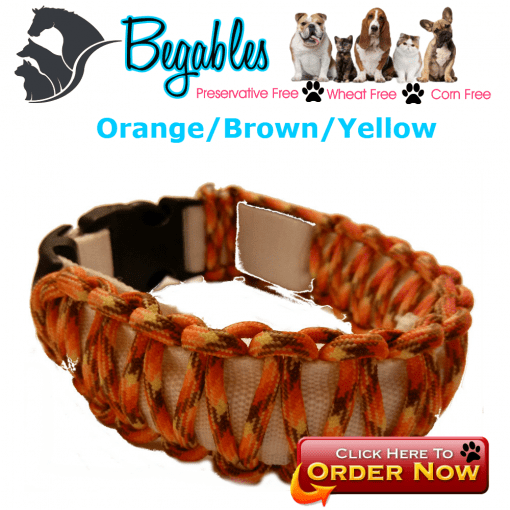 Orange Brown Yellow LED collar