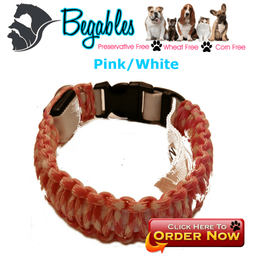 Pink white LED collar