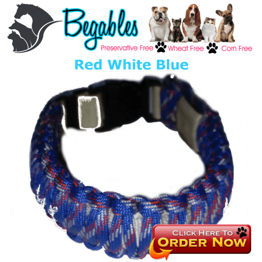 Red white blue LED collar