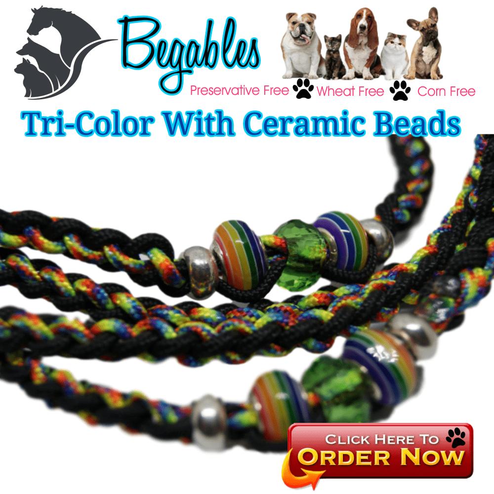 8 Strand Braid Paracord Dog Leash - Begables Treats