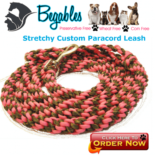 Stretchy Paracord Leash