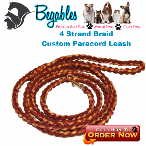 4 Strand Braid leash