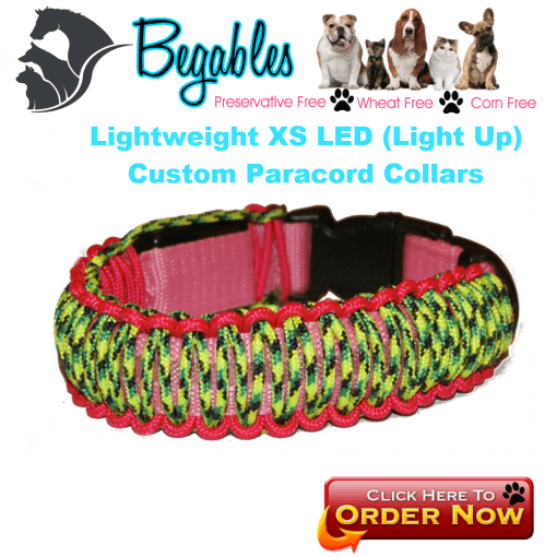 LED Lightweight Collar