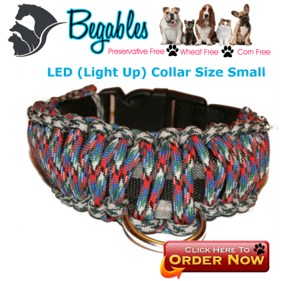 Small LED Collar