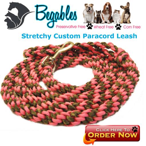 Stretchy Leash