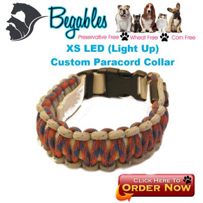 XS LED Collar