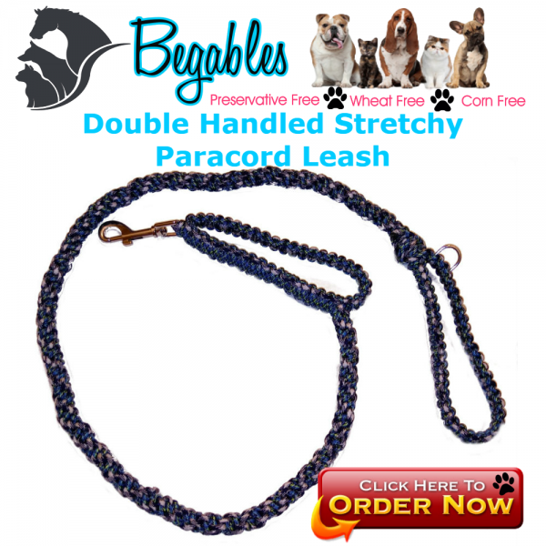 Double handled stretchy leash