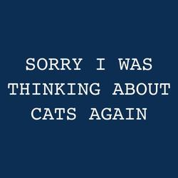 Sorry I was thinking about cats again shirt