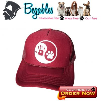 yin yang dog trucker hat
